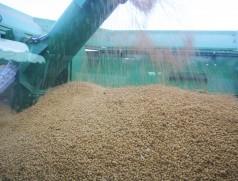 Foto: Taifun Tofuprodukte