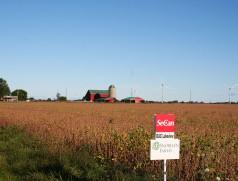 Im Gebiet der Großen Seen in Kanada zählt Soja bereits seit Jahrzehnten zu den wichtigsten Feldfrüchten - Tendenz steigend. Von dort kommen viele wertvolle Erfahrungen, Sorten und auch Technik für den heimischen Anbau. Foto: Taifun  Tofuprodukte