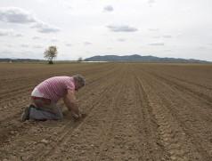 Ist der Boden bereits warm genug? Wie tief ist der Boden ausgetrocknet? Bei der Sojasaat lohnt es sich, genau hinzuschauen. Foto: Taifun Tofuprodukte
