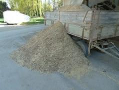 In der Vorreinigung von Soja können durch Besatz mit Hülsen, Unkrautsamen, abgeplatzten Samenschalen etc. erhebliche Volumen an Ausputz entstehen. Foto: Taifun Tofuprodukte