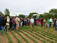 Soja-Pioniere teilen ihr Wissen: Feldtage zum Sojaanbau sind häufig Besuchermagneten. Foto: Taifun Tofuprodukte