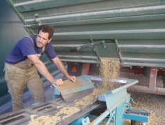 Kornschonende Übernahme von Soja mit dem Förderband. Foto: Taifun