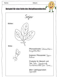 Mein Nutzpflanzenbuch