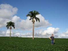 Paraná 2013: Für die Recherchen sind wir um die halbe Welt gereist. Foto: Taifun-Tofu GmbH