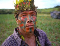 Die Ureinwohner Brasiliens sind von den Folgen des unaufhaltsamen Sojaanbaus unmittelbar-betroffen. Foto: Marco Keller